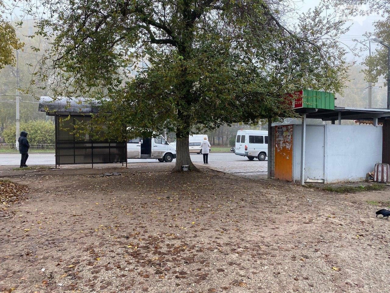 В Кривом Роге предприниматель помогла благоустроить остановку общественного транспорта, - ФОТО, фото-10