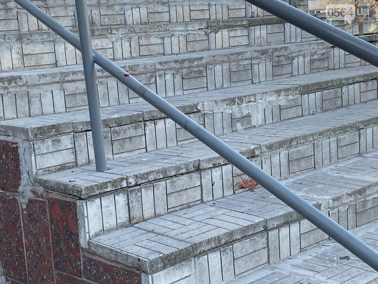 В Кривом Роге из окна 11 этажа выпал мужчина, - ФОТО 18+, фото-16