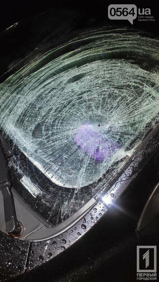 Ночь, ливень -  водитель Geely не заметил криворожанина, идущего по обочине, фото-2