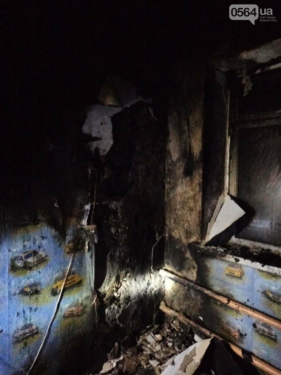 Во время пожара в Кривом Роге пострадал 70-летний пенсионер, - ФОТО , фото-4
