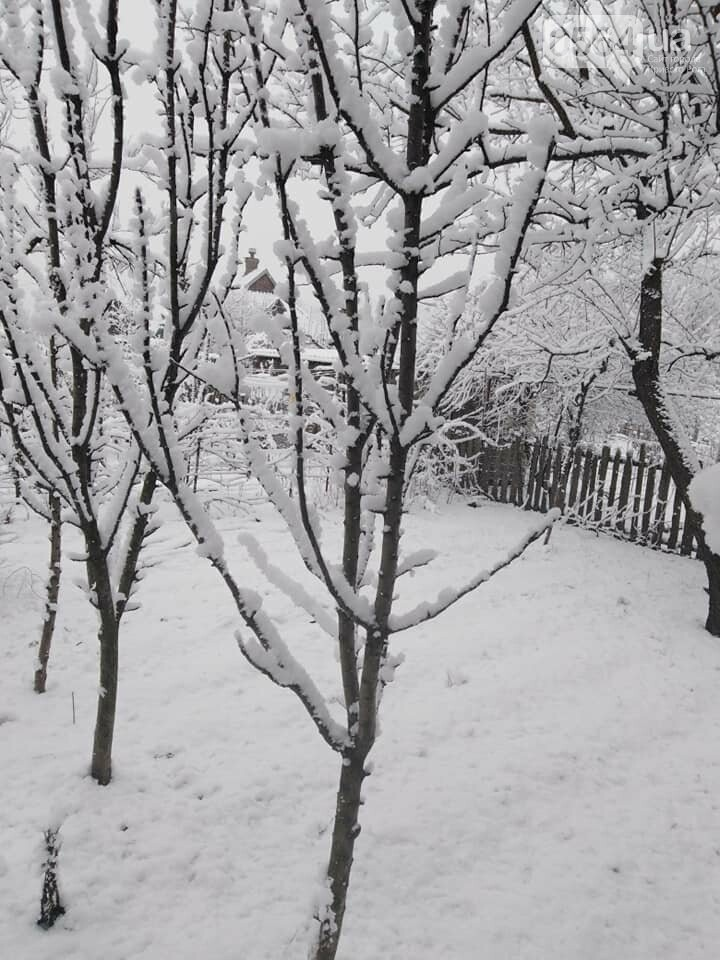 Кривой Рог на Крещение дождался снега, но местами, - ФОТО, фото-16