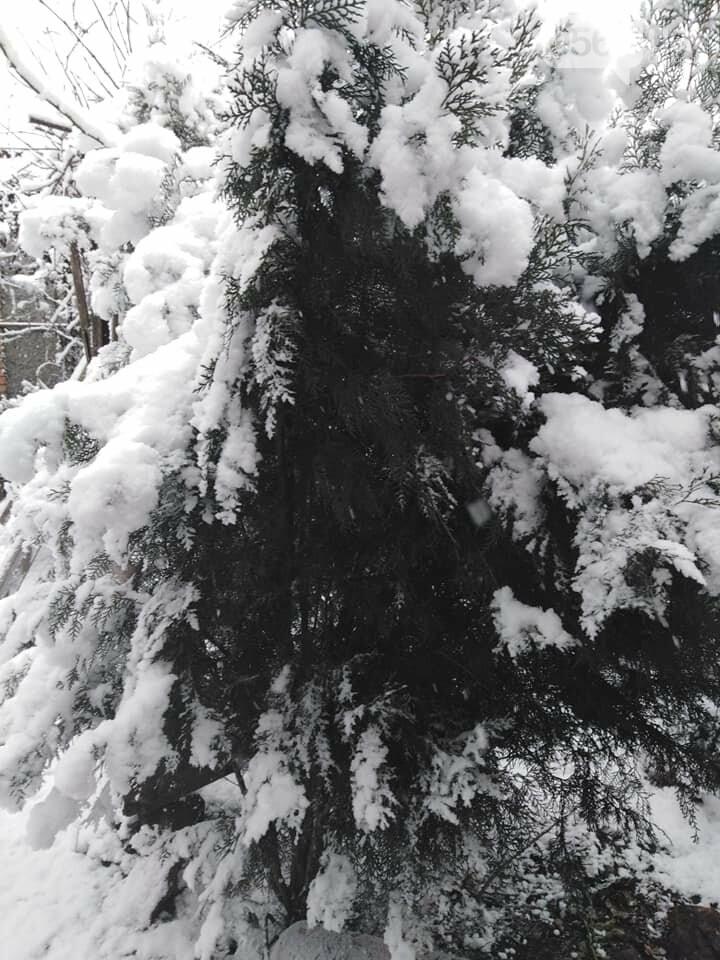 Кривой Рог на Крещение дождался снега, но местами, - ФОТО, фото-12