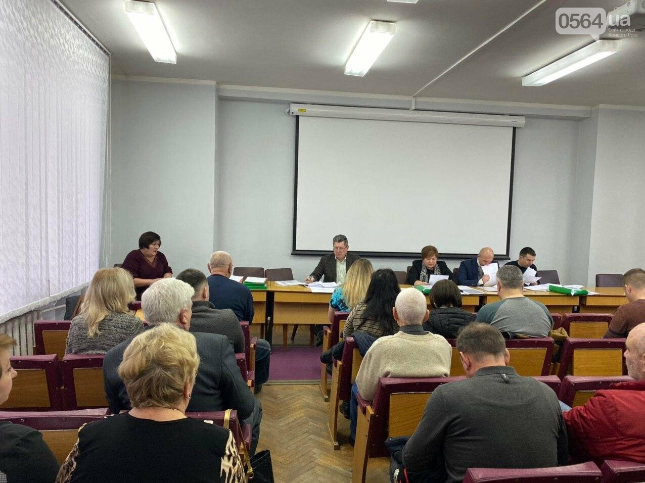 Криворожские депутаты собрались на заседания постоянных комиссий, - ФОТО, ВИДЕО, фото-17