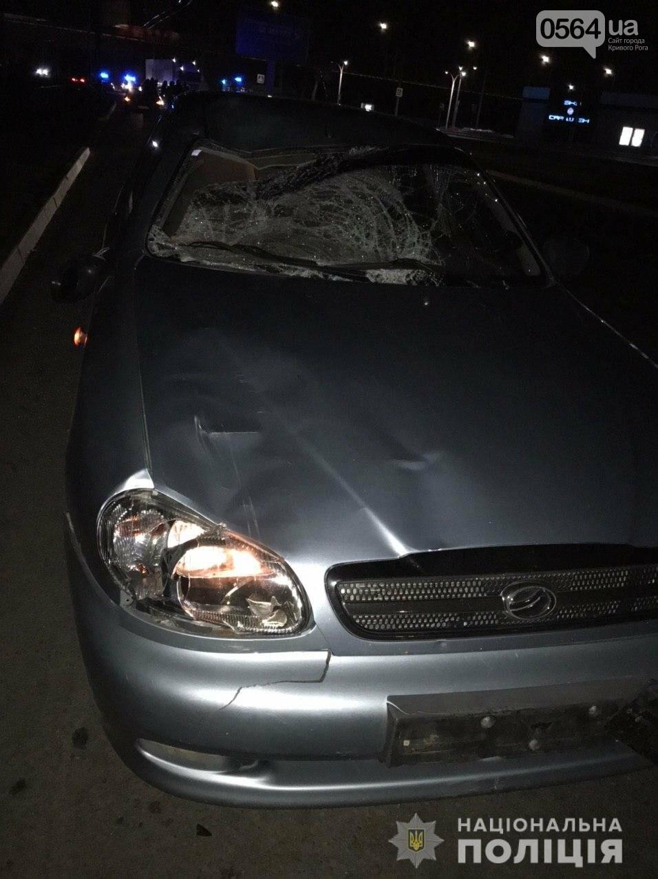 Полиция задержала водителя, который насмерть сбил двоих мужчин на пешеходном переходе , фото-1
