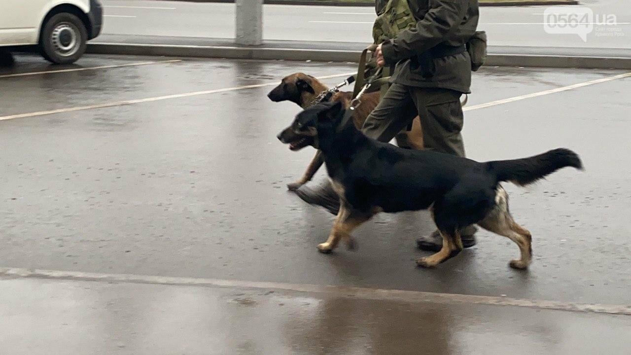 Два центральных района Кривого Рога будут патрулировать военнослужащие и полицейские, - ФОТО, ВИДЕО , фото-10