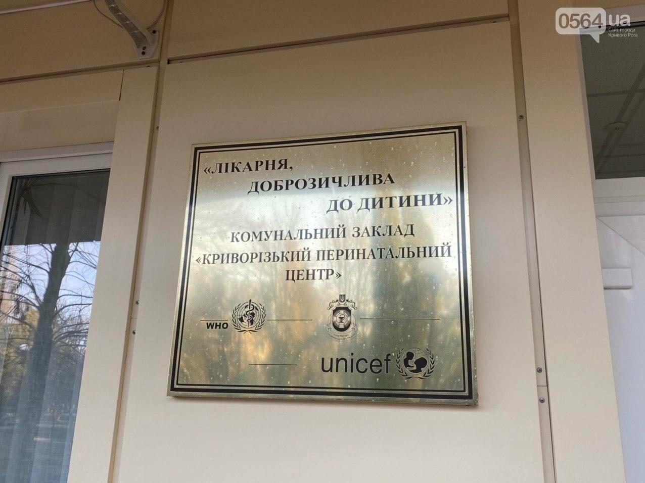 "В Кривом Роге запустили сервис ""єМалятко"", - ФОТО, ВИДЕО, фото-5"