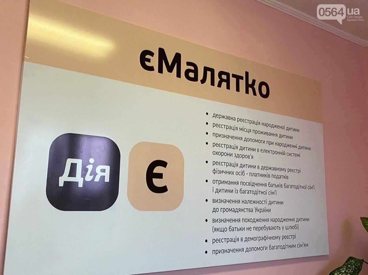 "В Кривом Роге запустили сервис ""єМалятко"", - ФОТО, ВИДЕО, фото-12"