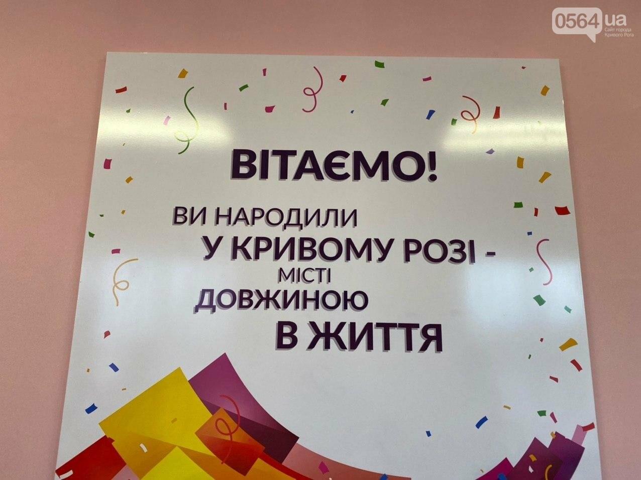 "В Кривом Роге запустили сервис ""єМалятко"", - ФОТО, ВИДЕО, фото-13"