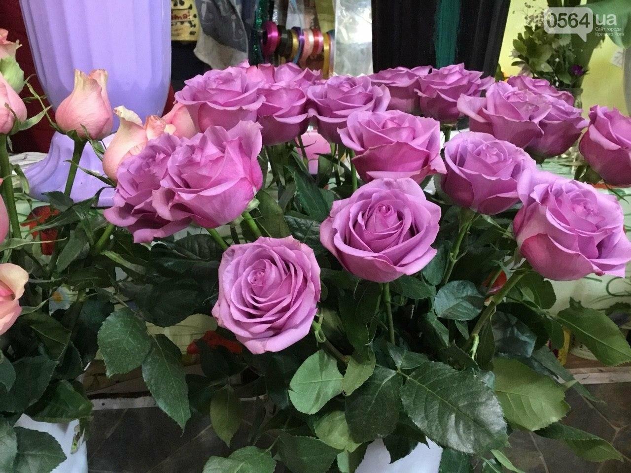 Сколько стоят примула, цикламен, мимоза? Обзор цен на цветы в Кривом Роге, - ФОТО, ВИДЕО, фото-5