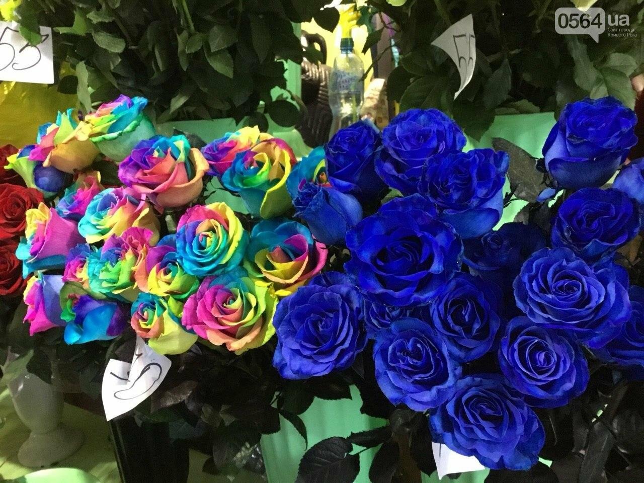 Сколько стоят примула, цикламен, мимоза? Обзор цен на цветы в Кривом Роге, - ФОТО, ВИДЕО, фото-2