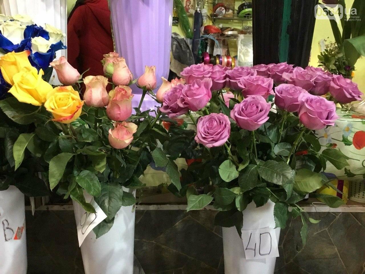 Сколько стоят примула, цикламен, мимоза? Обзор цен на цветы в Кривом Роге, - ФОТО, ВИДЕО, фото-3