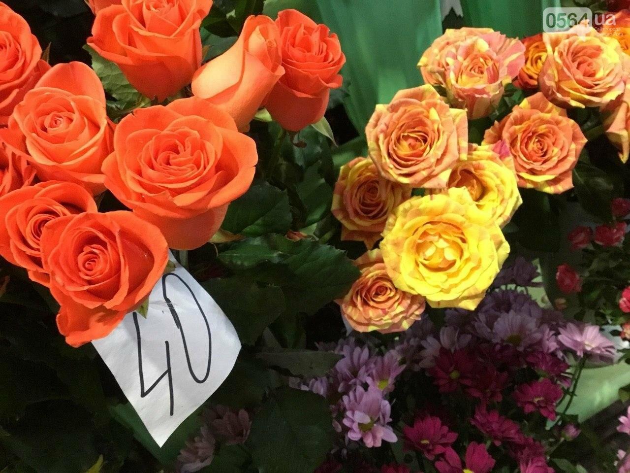 Сколько стоят примула, цикламен, мимоза? Обзор цен на цветы в Кривом Роге, - ФОТО, ВИДЕО, фото-4