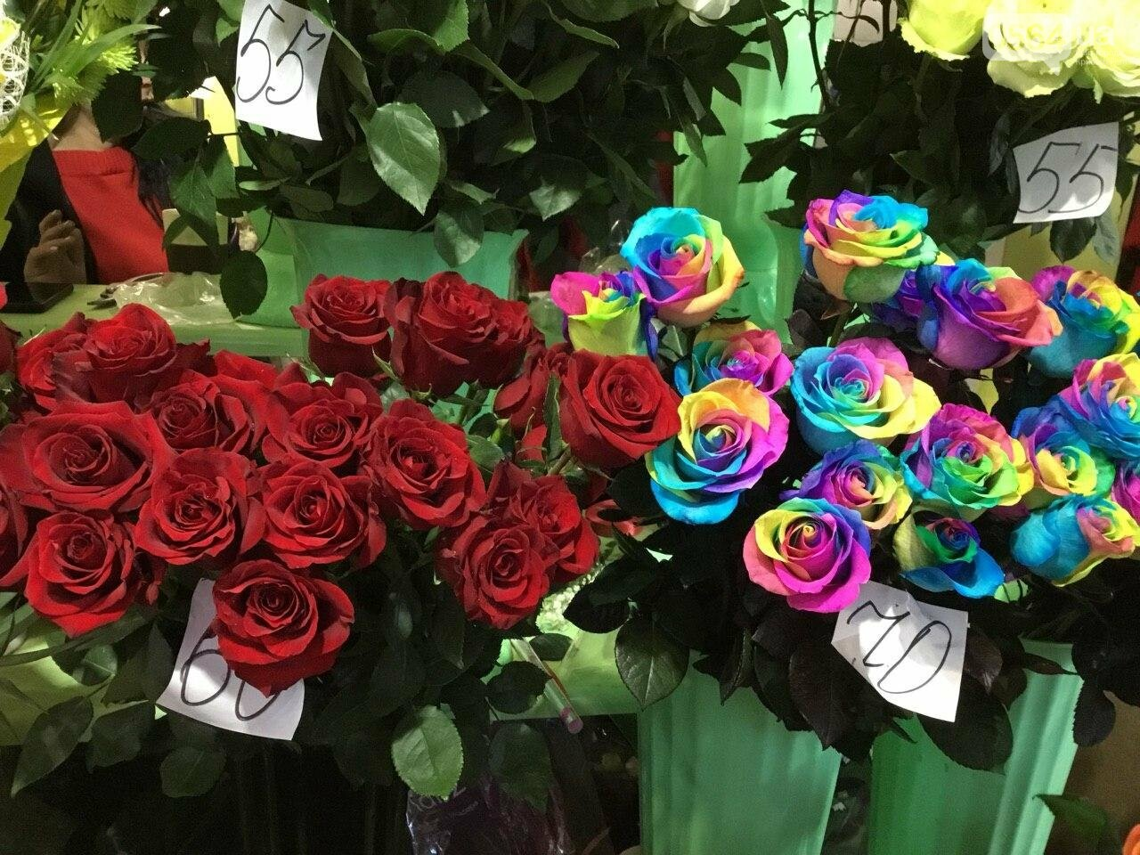 Сколько стоят примула, цикламен, мимоза? Обзор цен на цветы в Кривом Роге, - ФОТО, ВИДЕО, фото-8