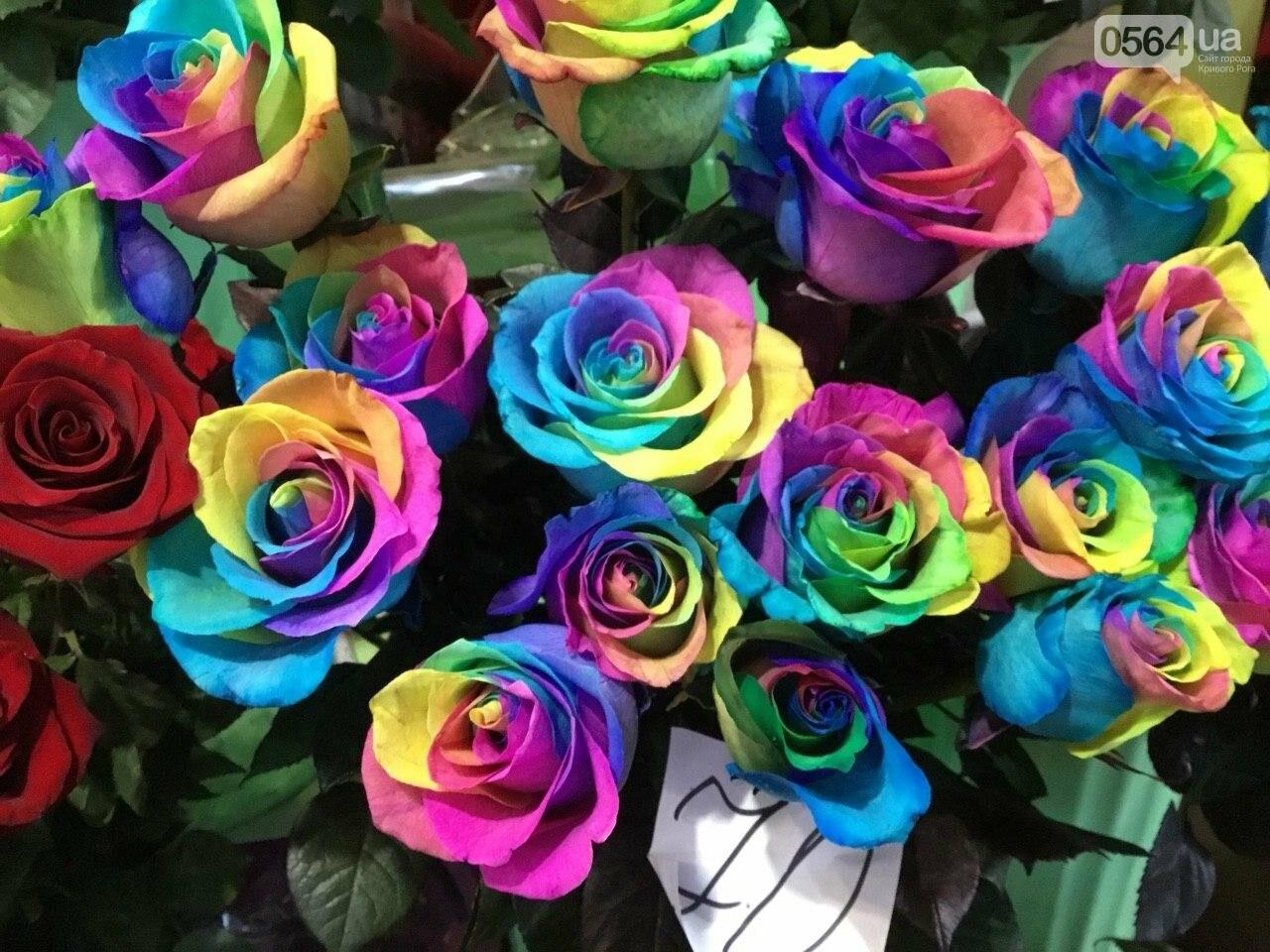 Сколько стоят примула, цикламен, мимоза? Обзор цен на цветы в Кривом Роге, - ФОТО, ВИДЕО, фото-1