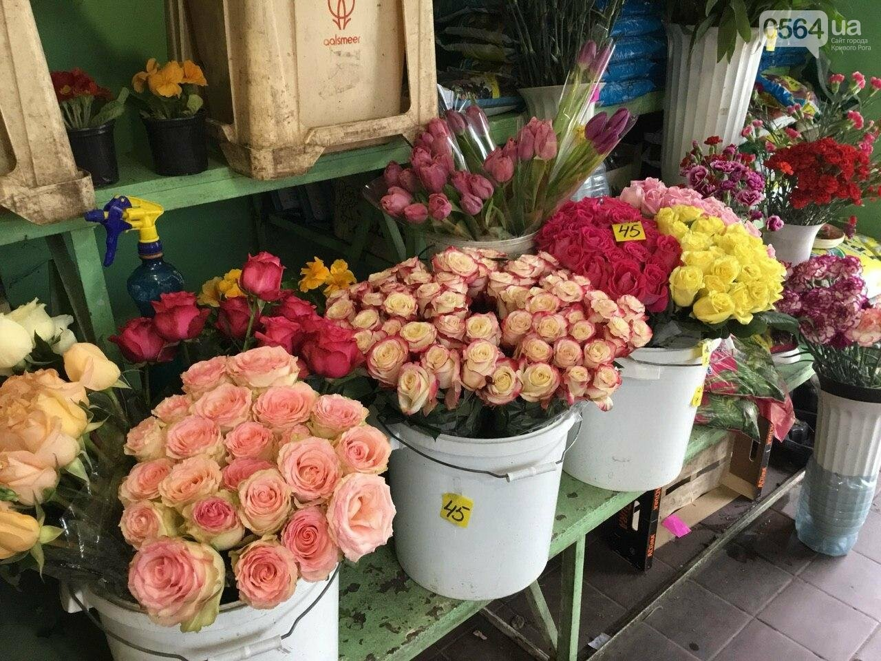 Сколько стоят примула, цикламен, мимоза? Обзор цен на цветы в Кривом Роге, - ФОТО, ВИДЕО, фото-21