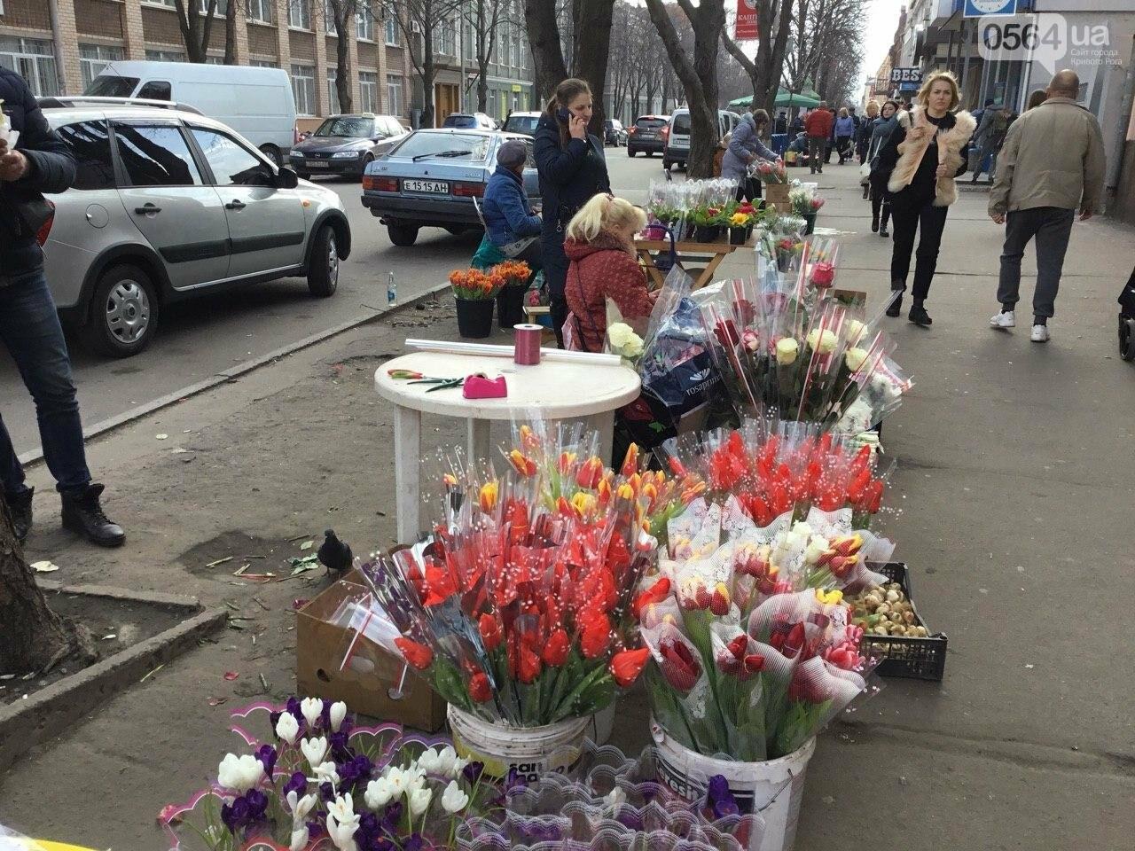Сколько стоят примула, цикламен, мимоза? Обзор цен на цветы в Кривом Роге, - ФОТО, ВИДЕО, фото-33