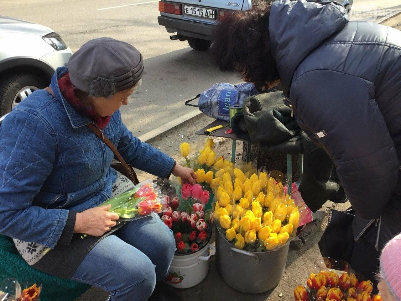 Сколько стоят примула, цикламен, мимоза? Обзор цен на цветы в Кривом Роге, - ФОТО, ВИДЕО, фото-34