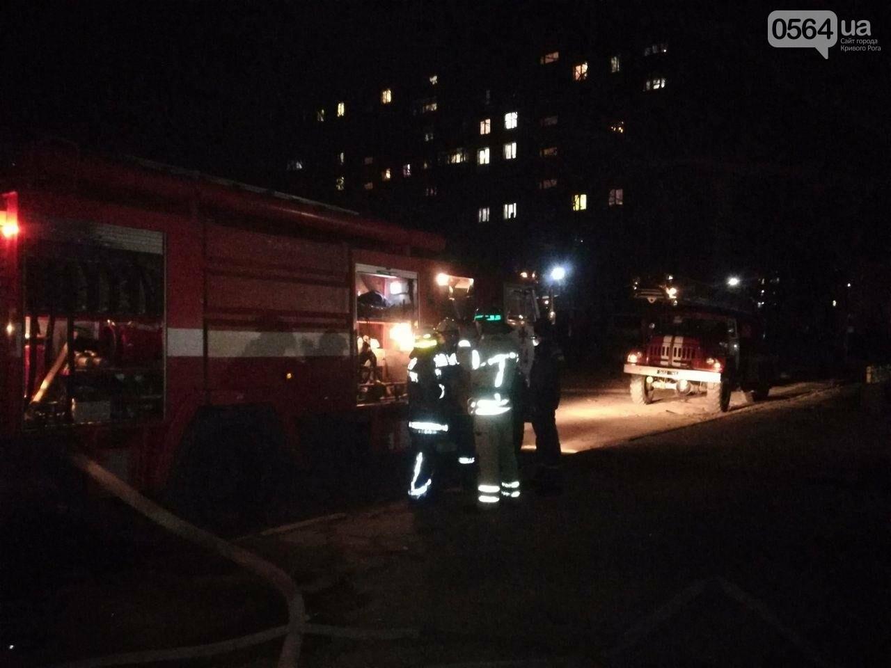 В Кривом Роге загорелась квартира на 6 этаже. Найдено тело мужчины, - ФОТО 18+, ВИДЕО, ОБНОВЛЕНО, фото-7