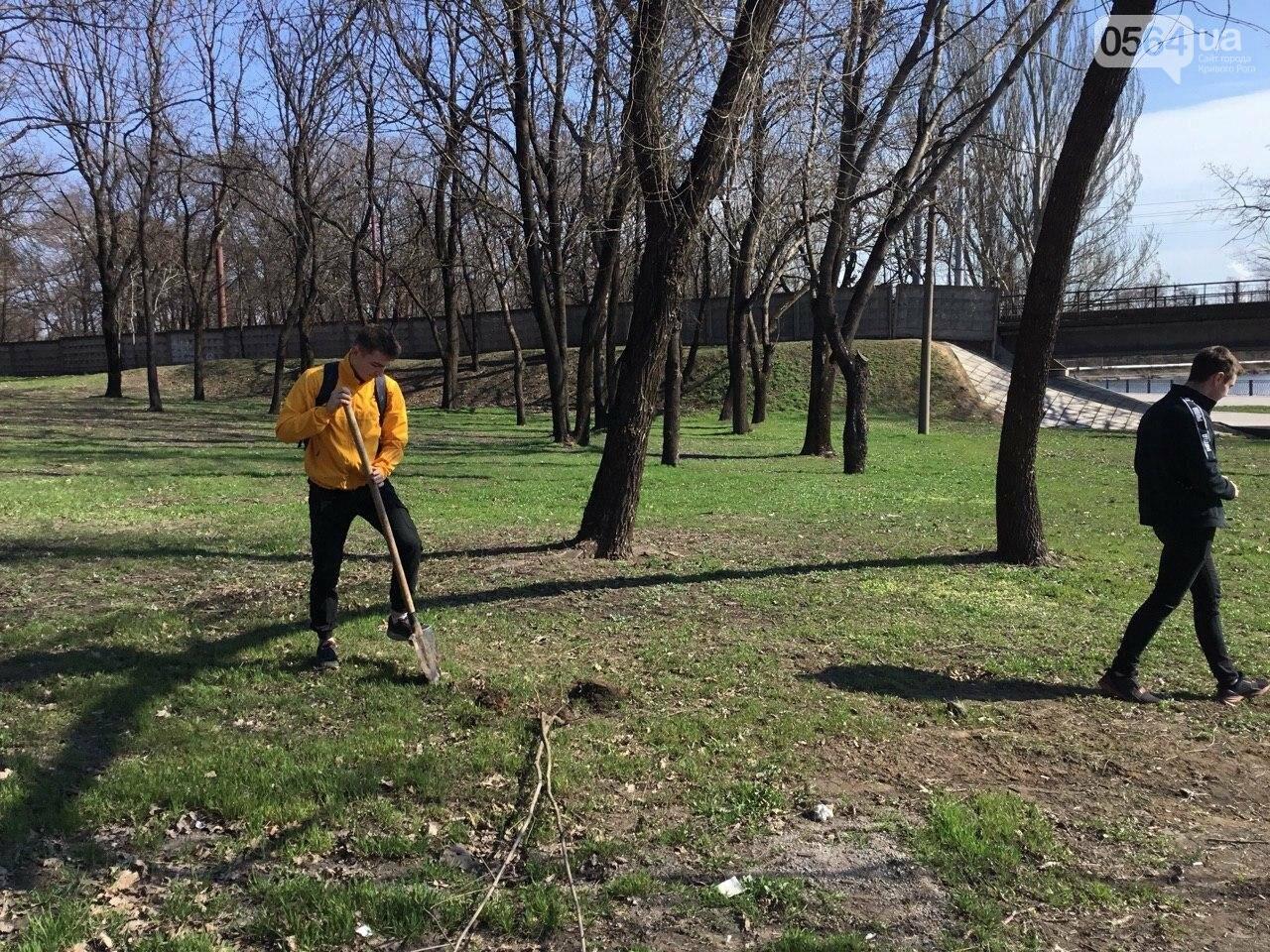 """""""Посади 1000 деревьев"""", - в Кривом Роге проходит акция ко Дню украинского добровольца, - ФОТО, ВИДЕО, фото-2"""