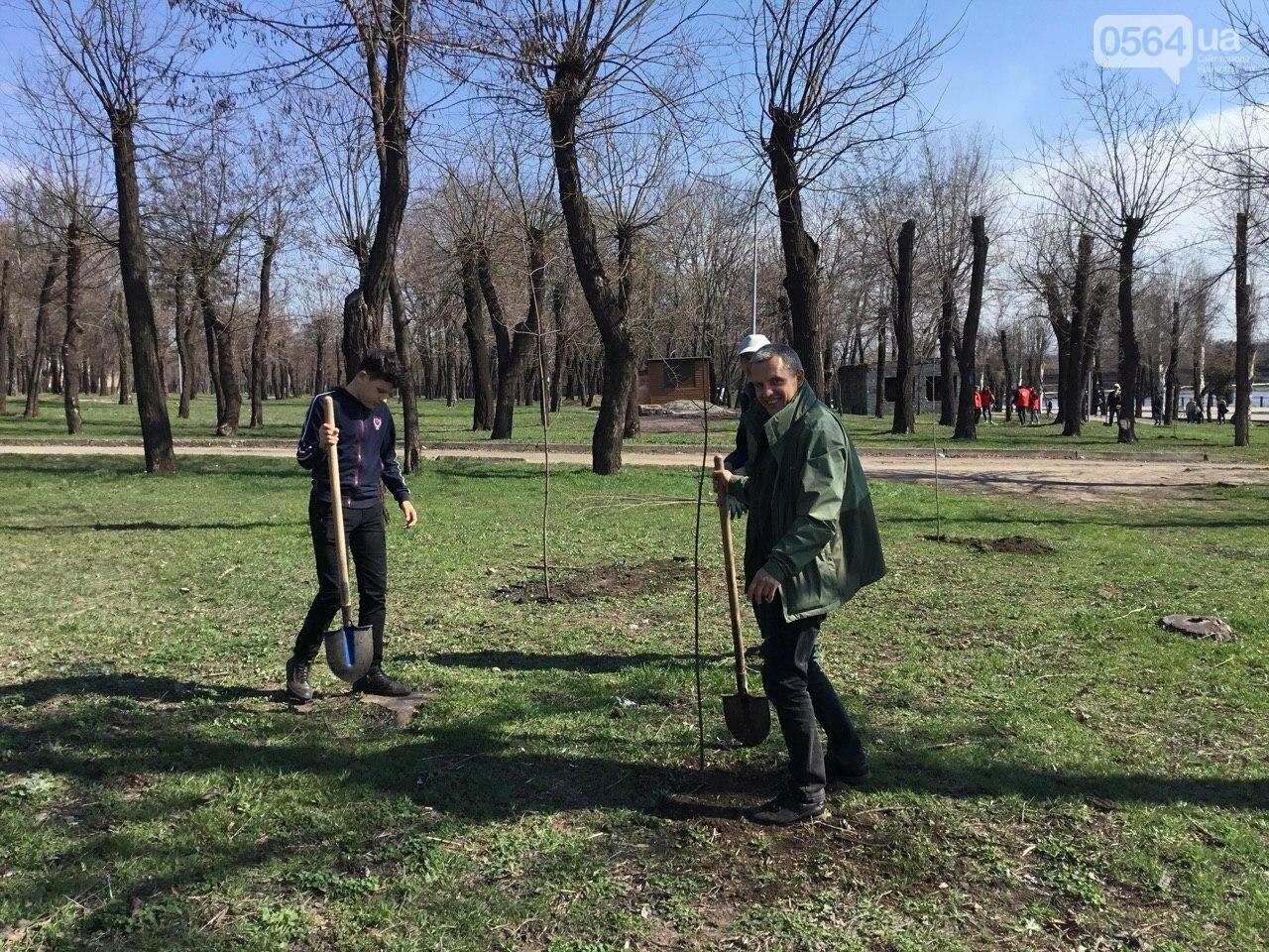 """""""Посади 1000 деревьев"""", - в Кривом Роге проходит акция ко Дню украинского добровольца, - ФОТО, ВИДЕО, фото-5"""