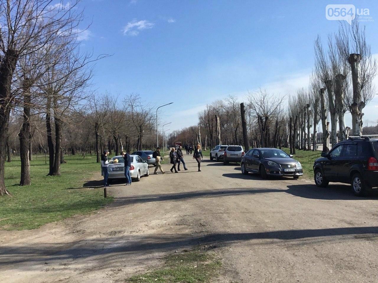 """""""Посади 1000 деревьев"""", - в Кривом Роге проходит акция ко Дню украинского добровольца, - ФОТО, ВИДЕО, фото-9"""