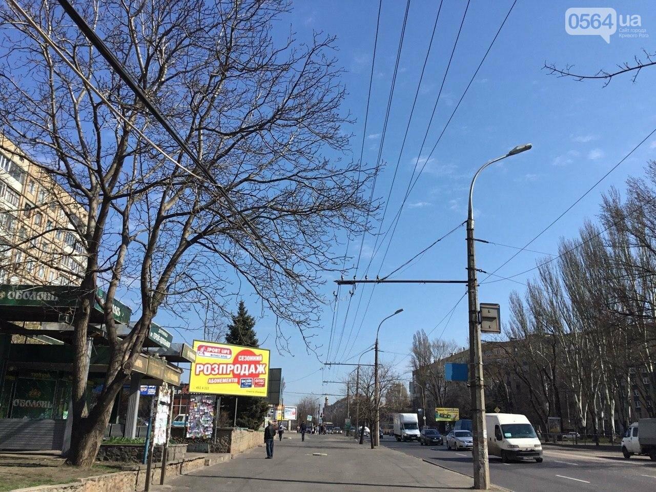В Кривом Роге на головы пешеходов опустился электропровод, - ФОТО, фото-6