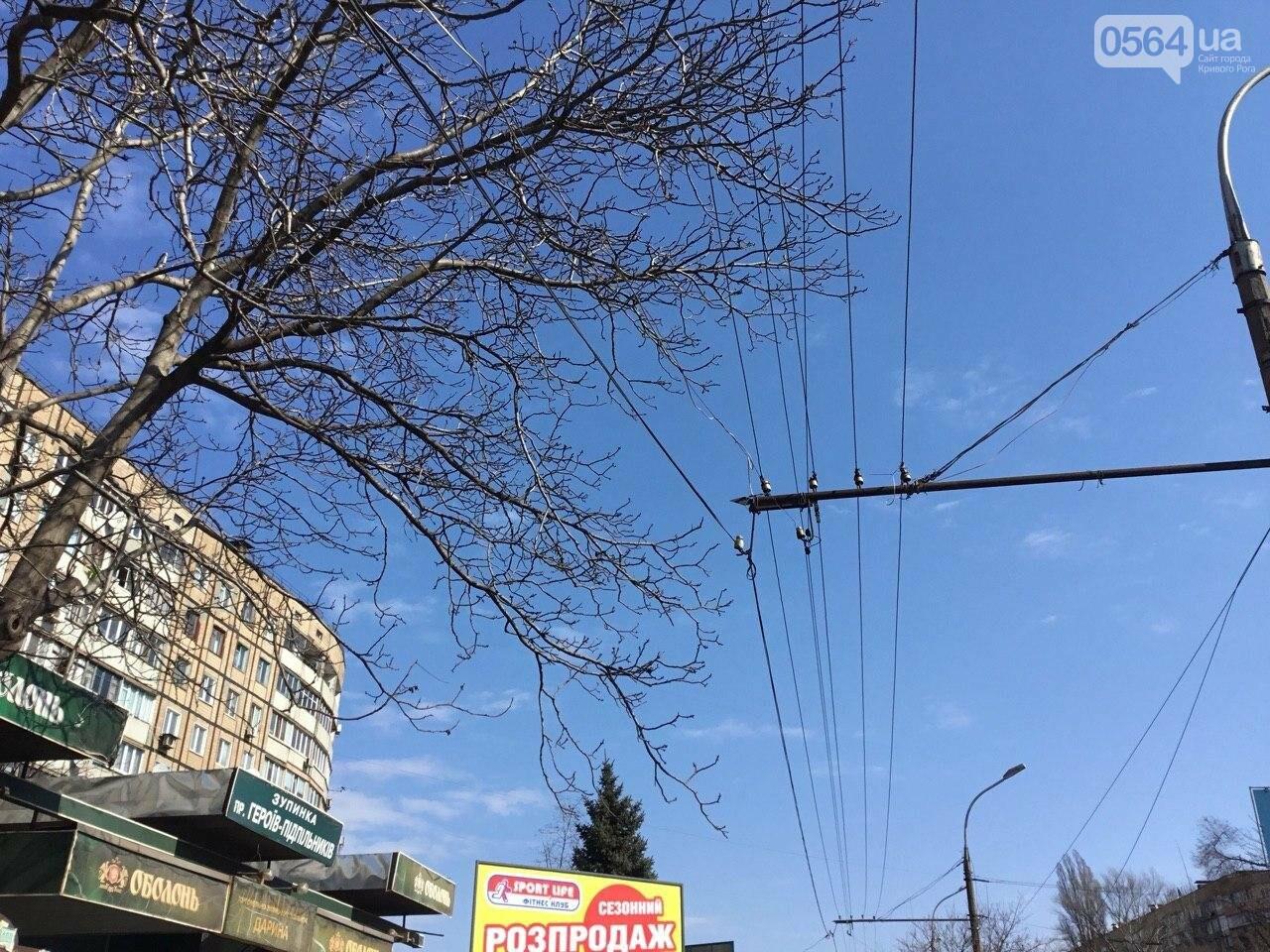 В Кривом Роге на головы пешеходов опустился электропровод, - ФОТО, фото-7