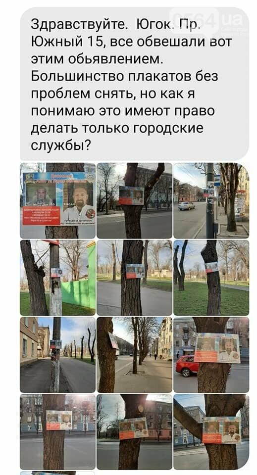 В Кривом Роге горожане пожаловались на общественников, которые вешали объявления на деревьях, - ФОТО , фото-1