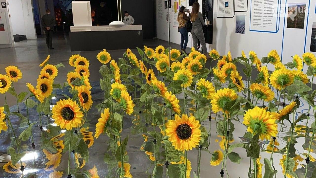 Ukraine WOW: что можно было узнать о Кривом Роге на интерактивной выставке, - ФОТО , фото-51