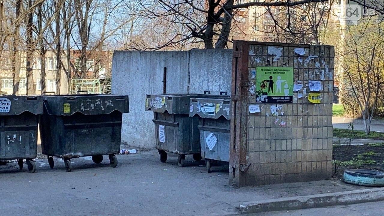 """""""Даже не смешно"""": криворожанам на просьбу реконструировать контейнерную площадку отчитались об уборке, - ФОТО, ВИДЕО , фото-19"""