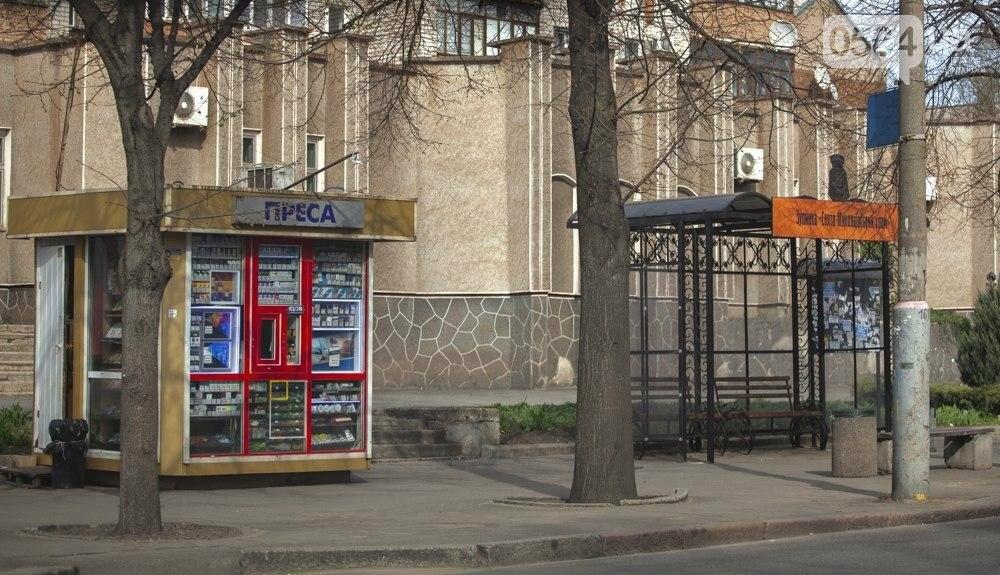 Как выглядит Кривой Рог после двух недель карантина, - ФОТО , фото-28