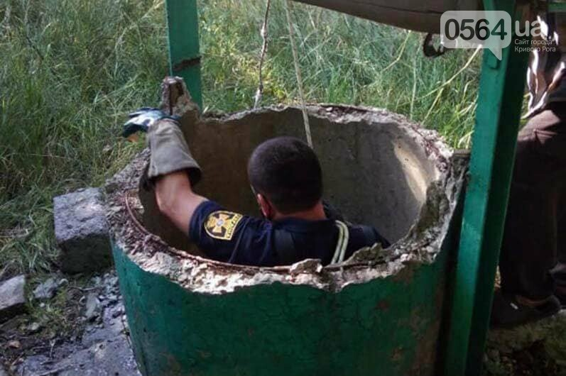 Спасатели достали козленка из 3-метрового колодца, - ФОТО, фото-3