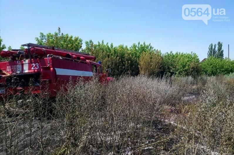 Под Кривым Рогом загорелся пустырь - выгорело почти 5 гектаров травы, - ФОТО , фото-2