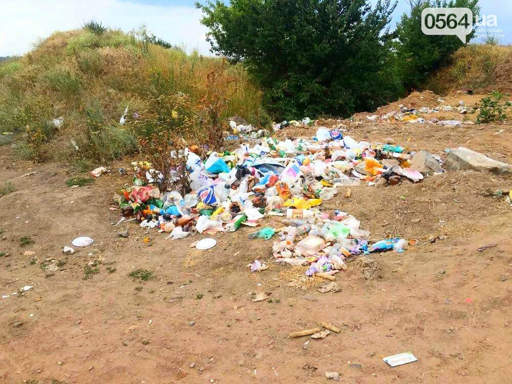 В Кривом Роге для сохранения экологии рекреационной зоны установили мусорный контейнер, - ФОТО, фото-4