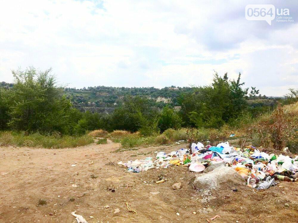 В Кривом Роге для сохранения экологии рекреационной зоны установили мусорный контейнер, - ФОТО, фото-5