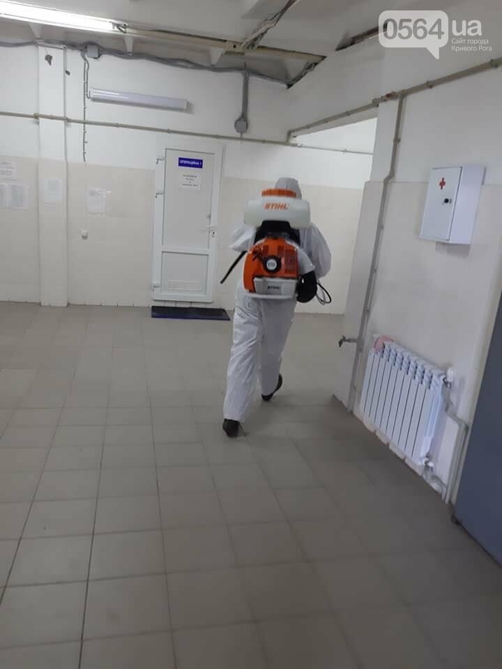 На криворожском КП провели дезинфекцию и установли боксы для борьбы с крысами, - ФОТО , фото-4