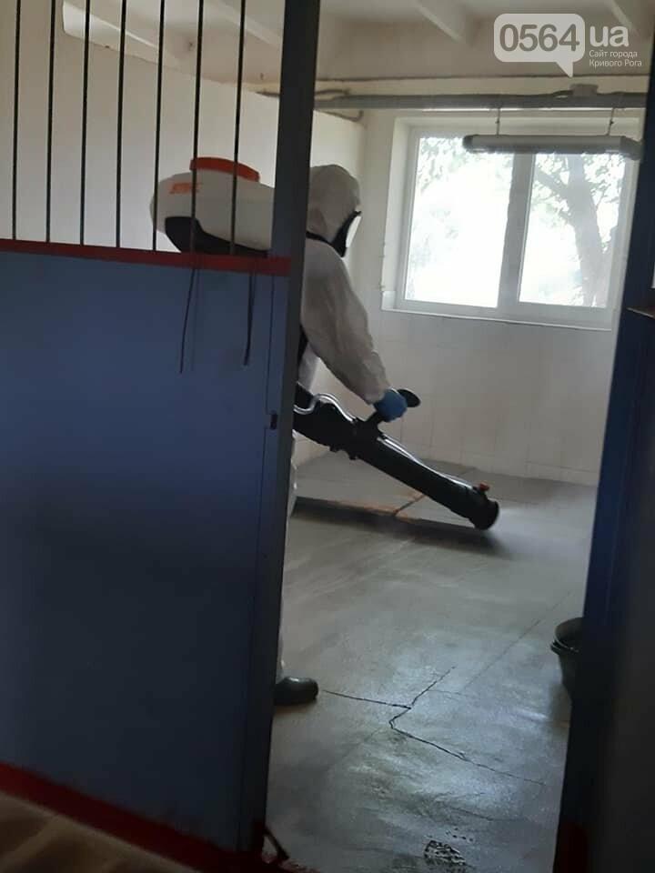 На криворожском КП провели дезинфекцию и установли боксы для борьбы с крысами, - ФОТО , фото-1