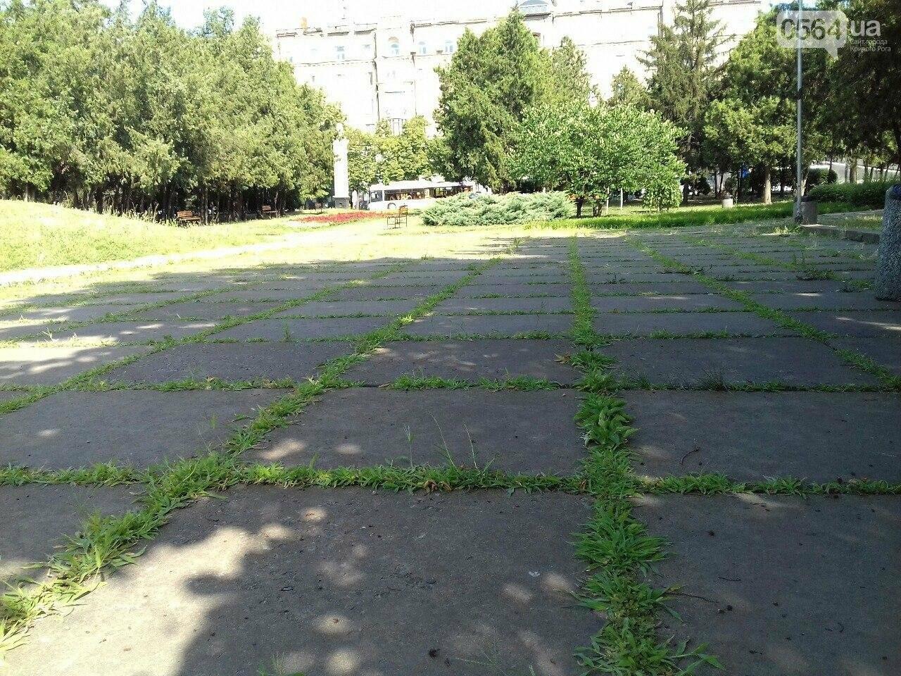 В сквере на центральной площади Кривого Рога воцарилась разруха, - ФОТО, фото-11