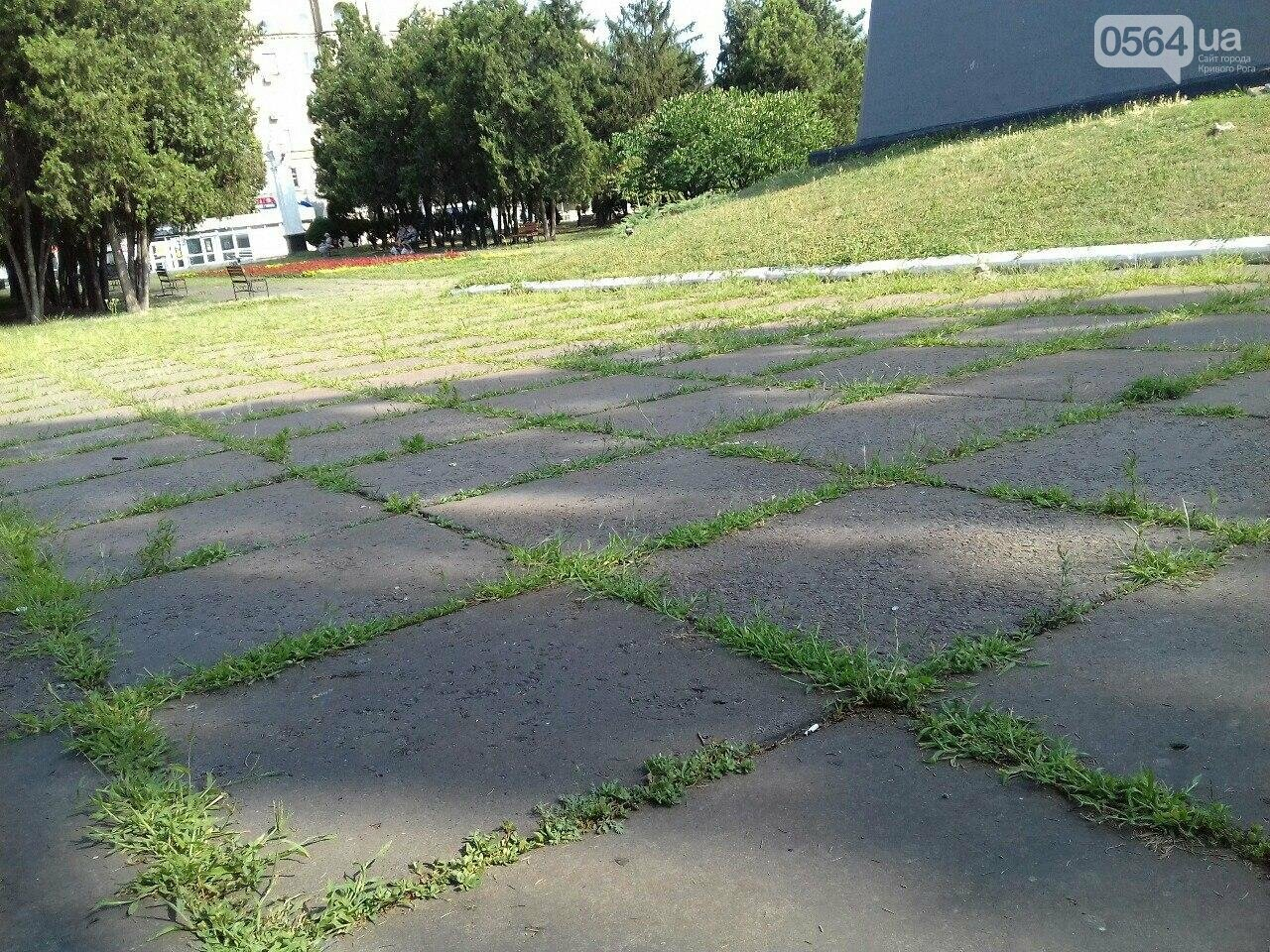 В сквере на центральной площади Кривого Рога воцарилась разруха, - ФОТО, фото-8