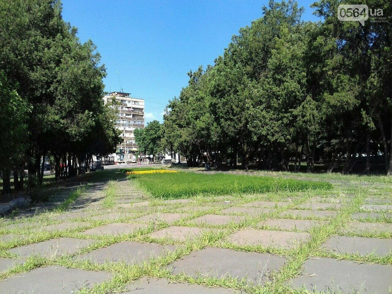 В сквере на центральной площади Кривого Рога воцарилась разруха, - ФОТО, фото-6