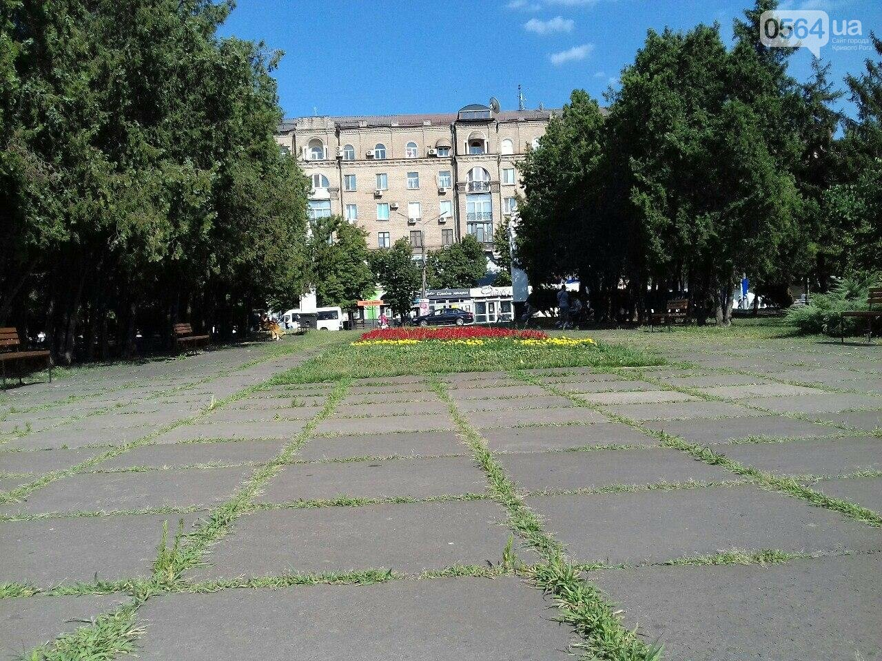 В сквере на центральной площади Кривого Рога воцарилась разруха, - ФОТО, фото-5