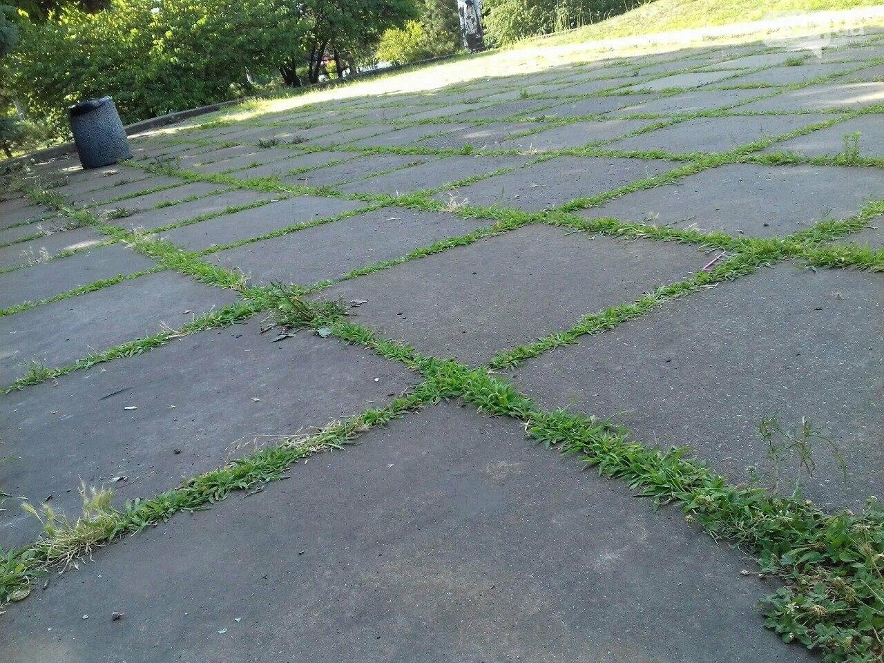 В сквере на центральной площади Кривого Рога воцарилась разруха, - ФОТО, фото-4