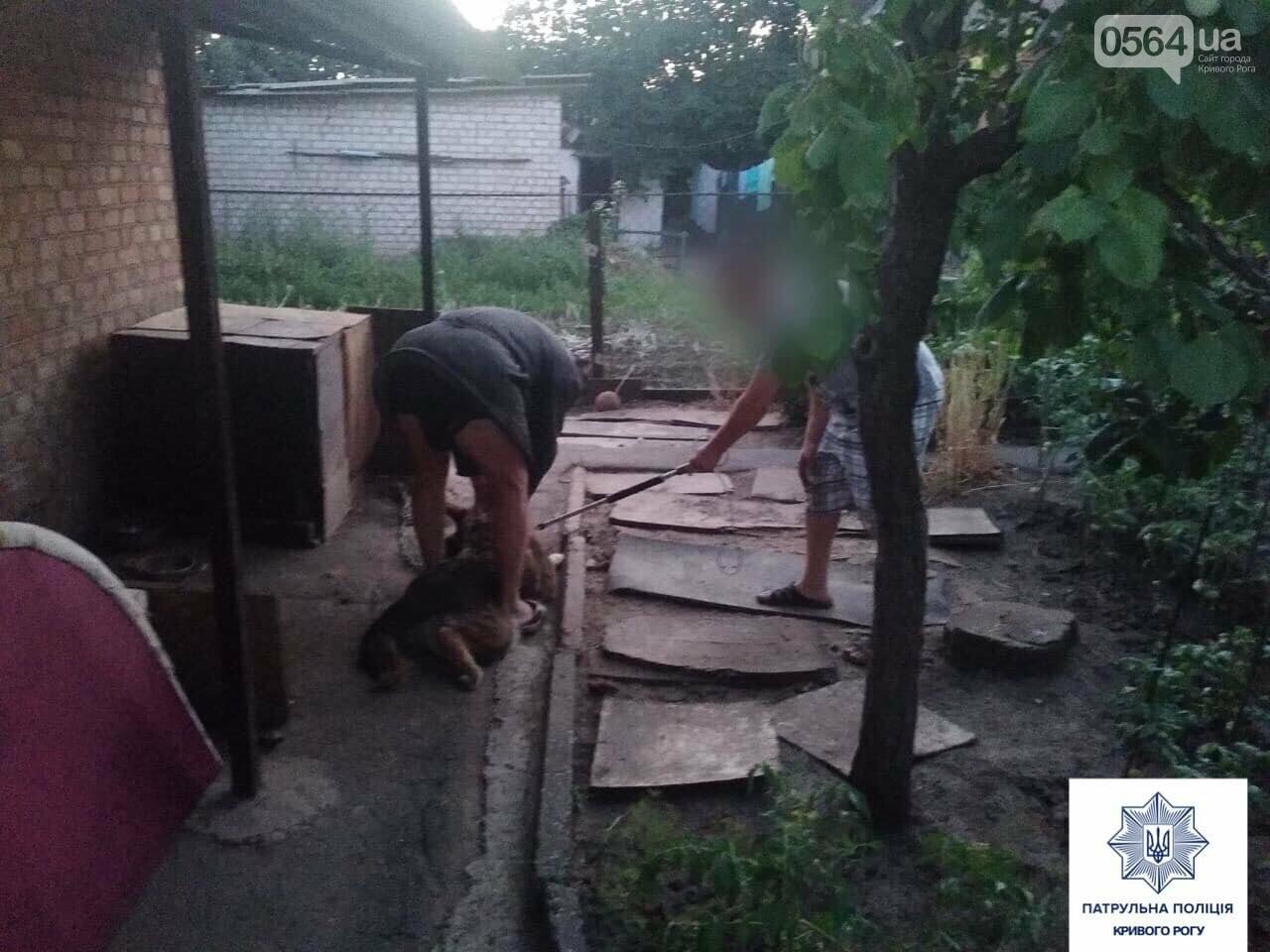 В Кривом Роге искусанный собственным псом мужчина вызвал полицию, - ФОТО, фото-3