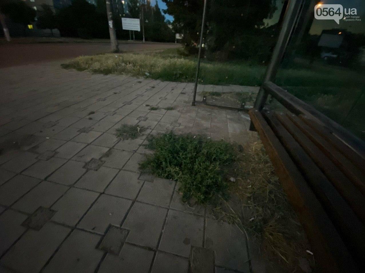 """""""Опять вандалы?"""": почему в Кривом Роге на новой остановке нет стекла, - ФОТО , фото-16"""