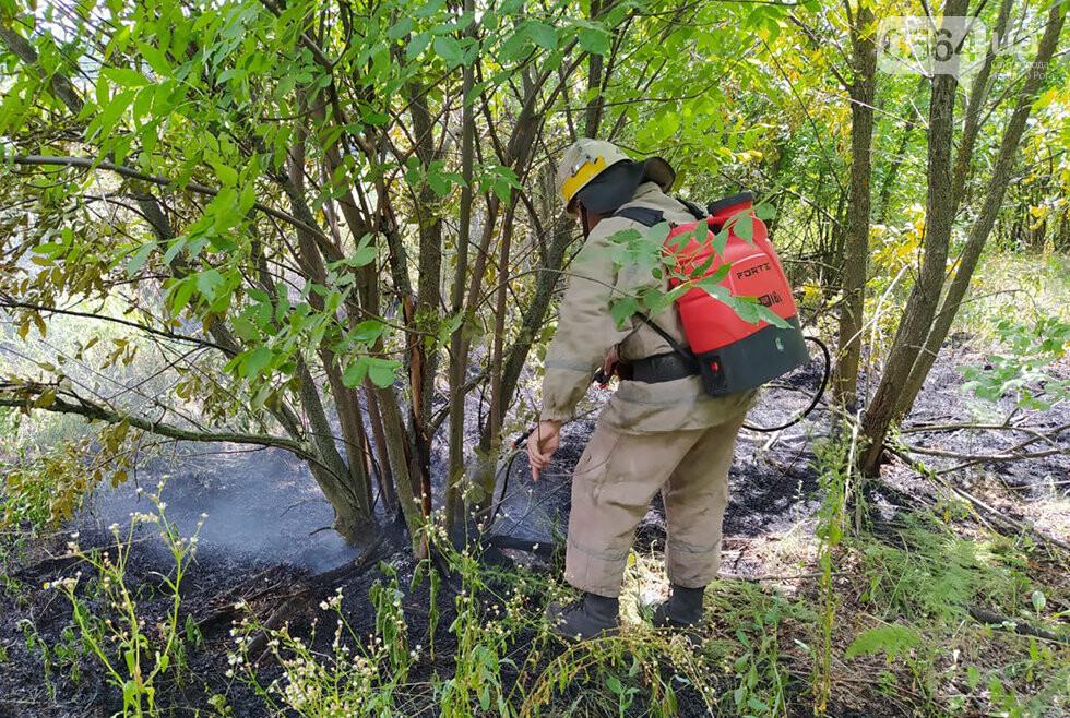 25 пожаров - за один день! Спасатели Днепропетровщины взывают к сознательности граждан, фото-2