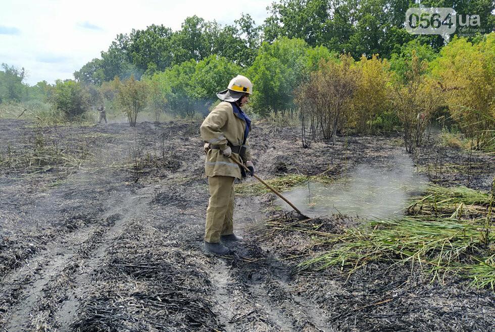 25 пожаров - за один день! Спасатели Днепропетровщины взывают к сознательности граждан, фото-1