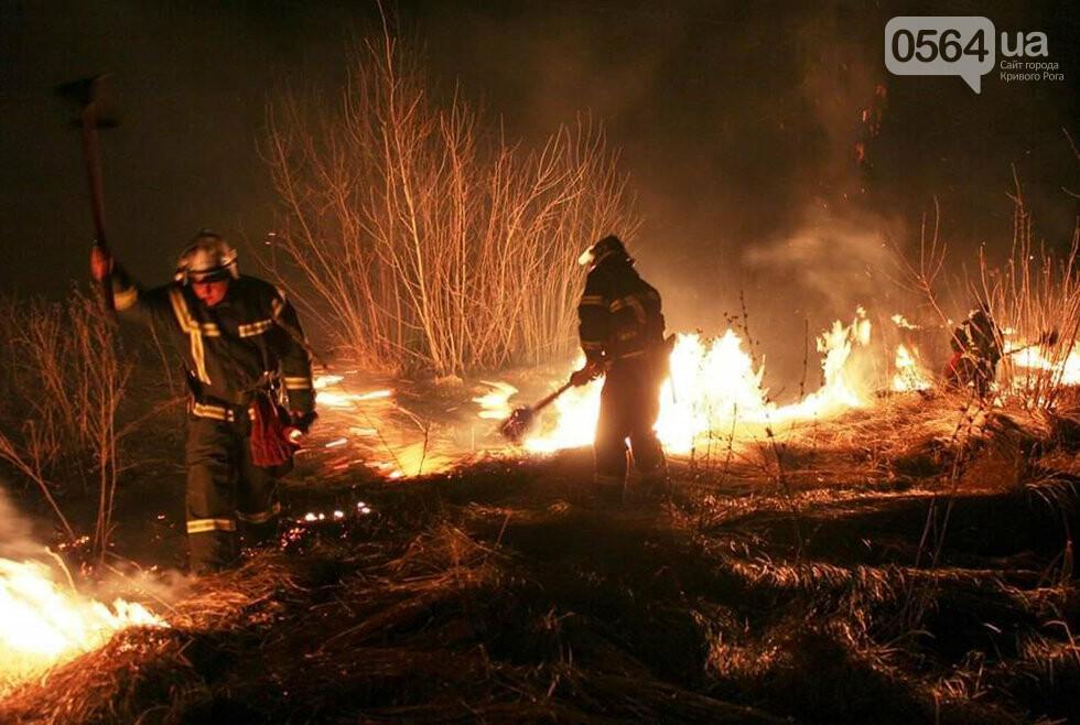 25 пожаров - за один день! Спасатели Днепропетровщины взывают к сознательности граждан, фото-3