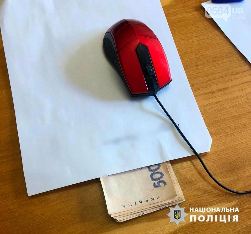 В Кривом Роге полицейского поймали на взятке, - ФОТО, фото-2