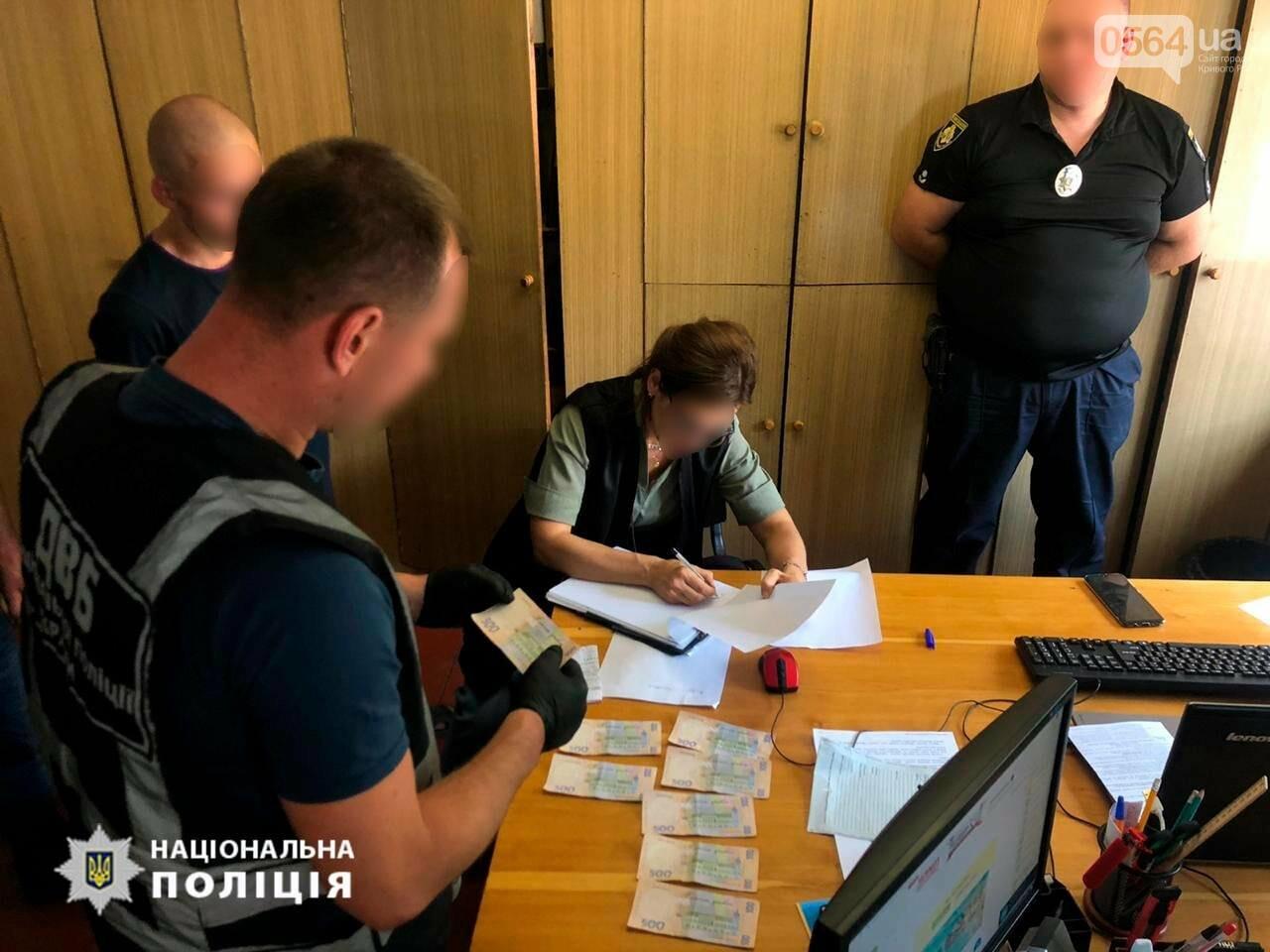 В Кривом Роге полицейского поймали на взятке, - ФОТО, фото-1