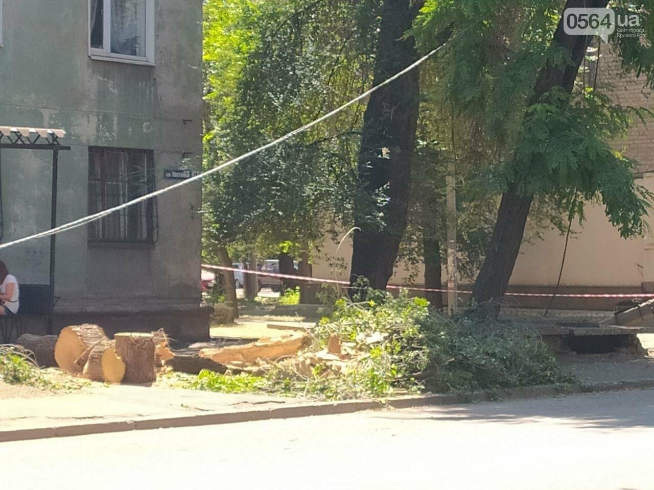 В Кривом Роге сломавшаяся электроопора, удерживаемая каркасом из арматуры, зависла прямо над тротуаром, - ФОТО, фото-5